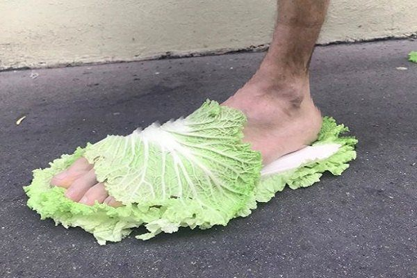 sandale laitue